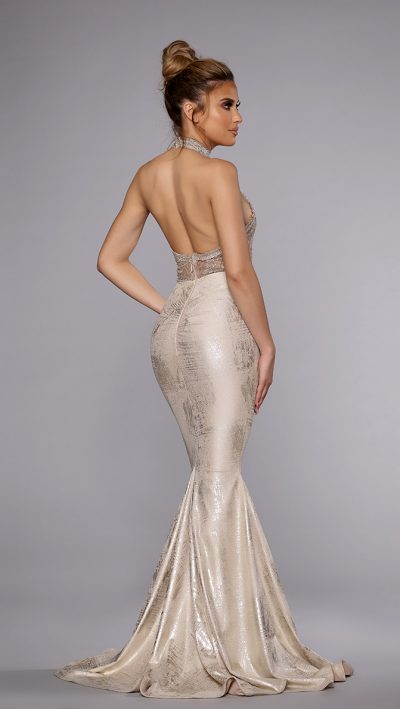 silver-gown-back-400x709.jpg